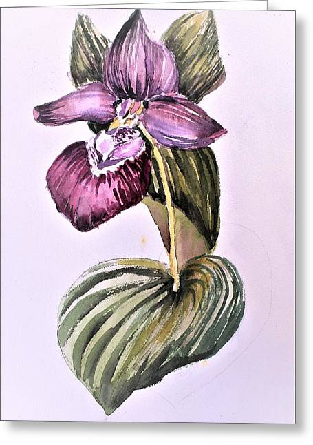 Greeting Card featuring the painting Slipper Foot Orchid by Mindy Newman