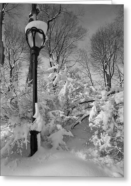 Snow Storm 2 Greeting Card by Robert Ullmann