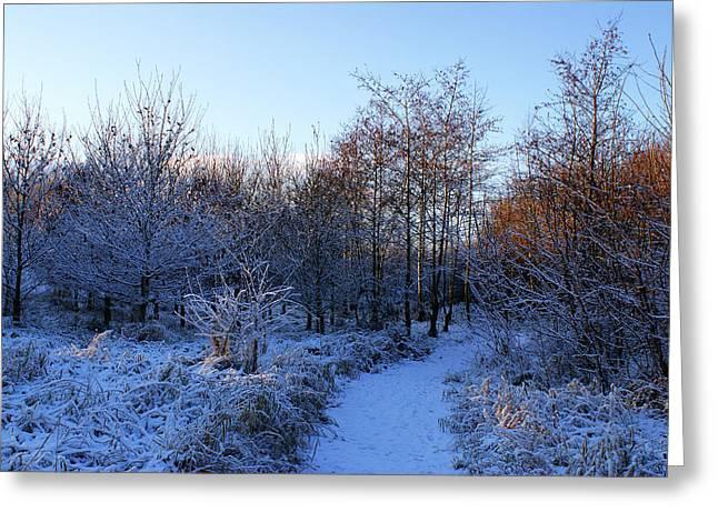 Snowy Cabin Wood Greeting Card