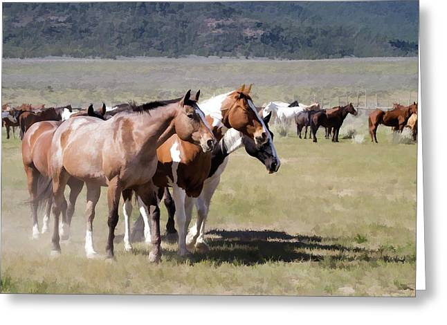 Greeting Card featuring the digital art Sombrero Ranch Horse Drive, An Annual Event In Maybell, Colorado by Nadja Rider