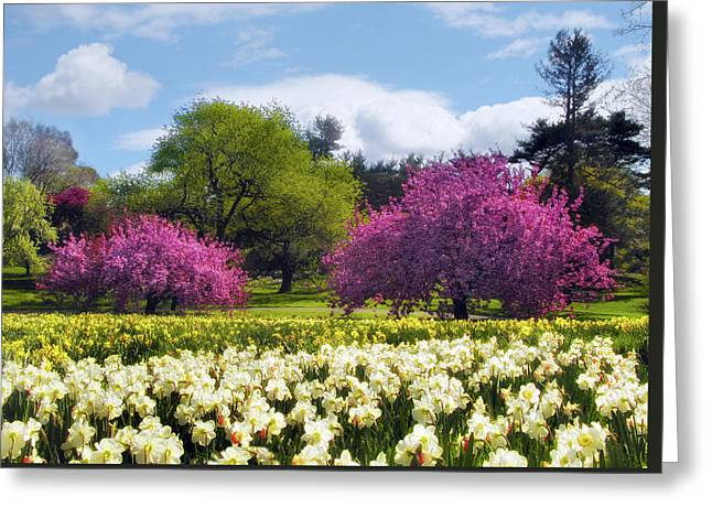 Greeting Card featuring the photograph Spring Fever by Jessica Jenney