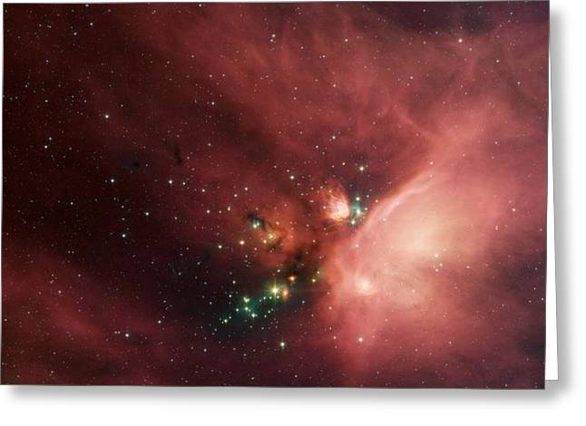 Stars In The Rho Ophiuchi Cloud Complex Greeting Card