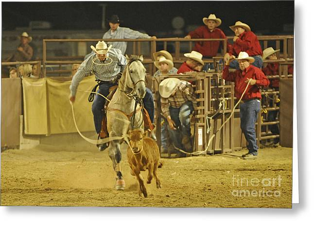 Steer Wrestling Greeting Card by Dennis Hammer