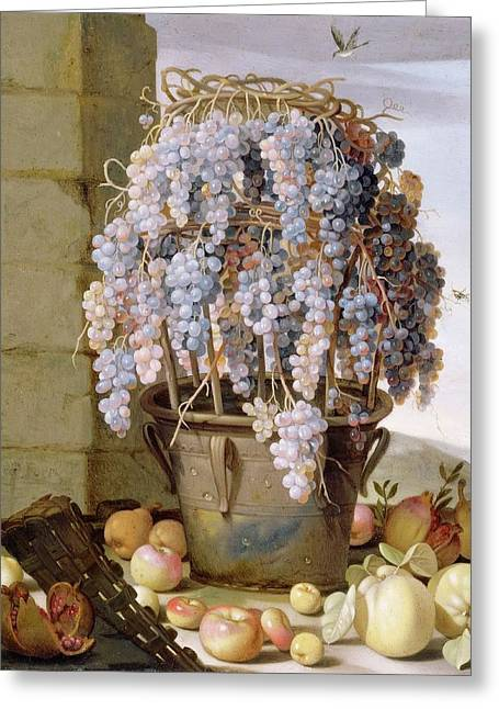 Still Life With Grapes Greeting Card by MotionAge Designs
