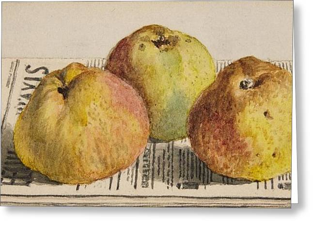 Still Life With Three Apples And A Newspaper Greeting Card