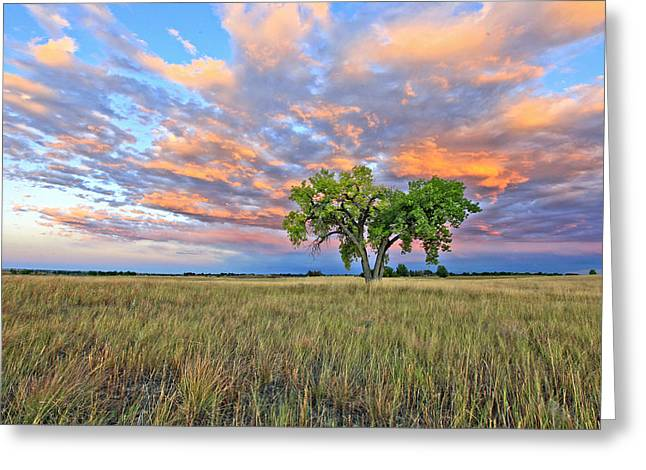 Sunset At Fossel Creek. Co Greeting Card by James Steele
