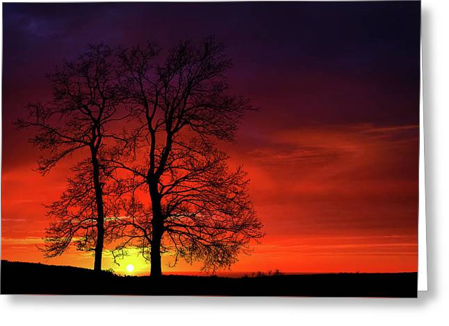 Greeting Card featuring the photograph Sunset by Bess Hamiti
