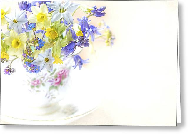 Sweet Spring Greeting Card by Jacky Parker