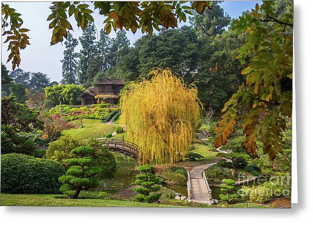 The Beautiful Fall Colors Of The Japanese Gardens In The Hunting Greeting Card