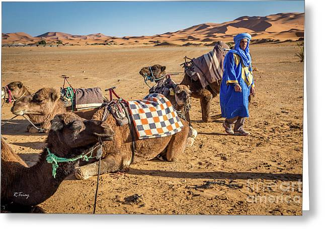 The Camel Driver And His Camels Greeting Card