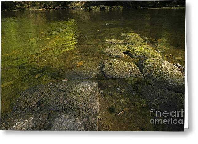 The River Swale Greeting Card