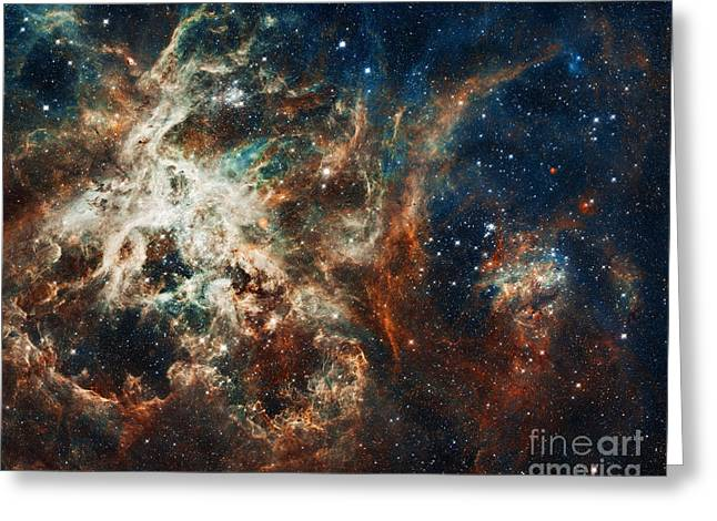 The Tarantula Nebula Greeting Card