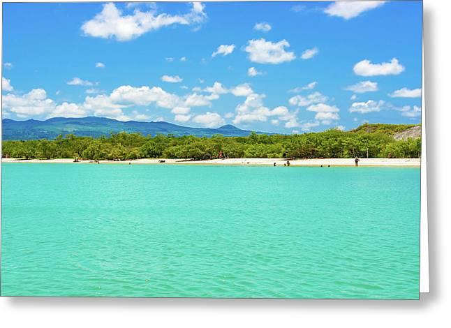 Tortuga Bay Beach At Santa Cruz Island In Galapagos  Greeting Card