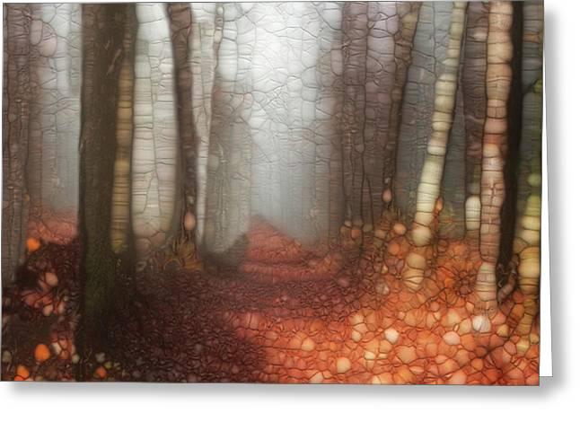 Trail Series 5 Greeting Card by Jack Zulli