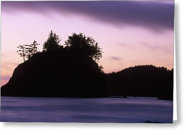 Trinidad State Beach Greeting Card by Soli Deo Gloria Wilderness And Wildlife Photography