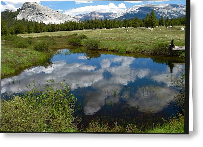 Tuolumne Meadows Greeting Card