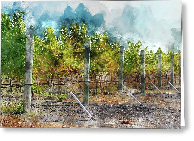Vineyard In Autumn Greeting Card by Brandon Bourdages