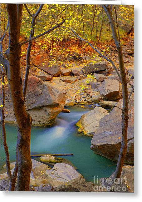 Virgin River In Autumn Greeting Card by Dennis Hammer