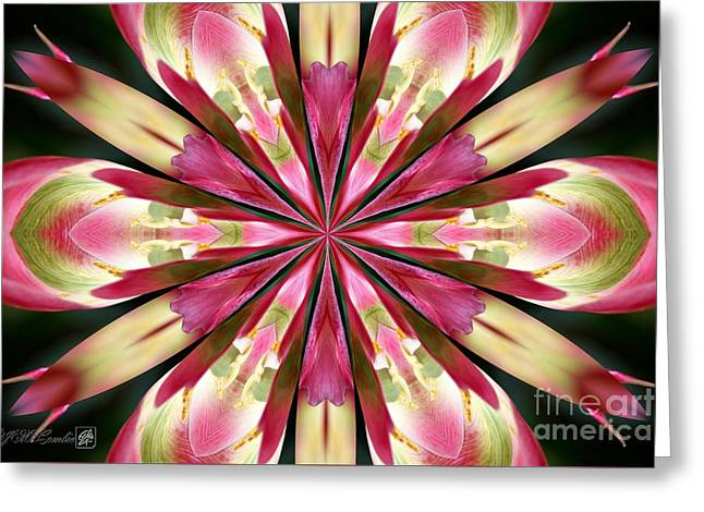 Virichic Kaleidoscope Greeting Card