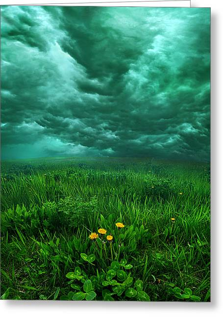 Waiting Greeting Card by Phil Koch