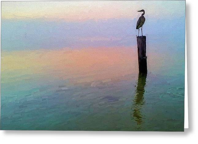 Watching Over Pensacola Bay Greeting Card by JC Findley