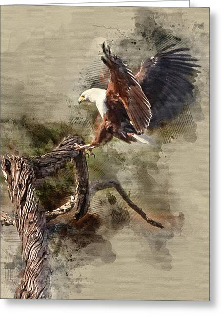 Water Paint African Fish Eagle Landing Greeting Card
