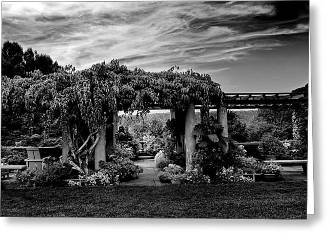Wave Hill Pergola Greeting Card by Jessica Jenney