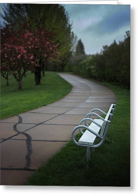 White Bench By Pedestrian Path Greeting Card