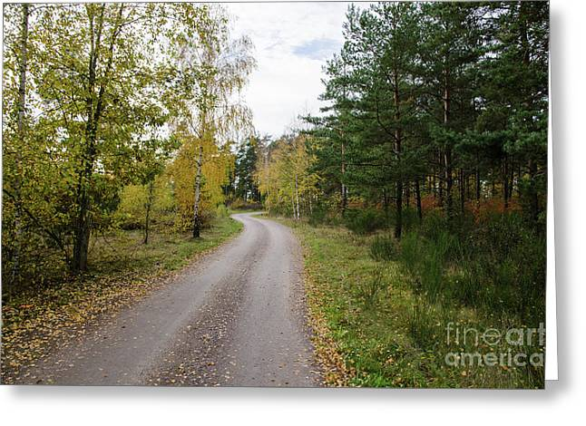 Greeting Card featuring the photograph Winding Gravel Road by Kennerth and Birgitta Kullman