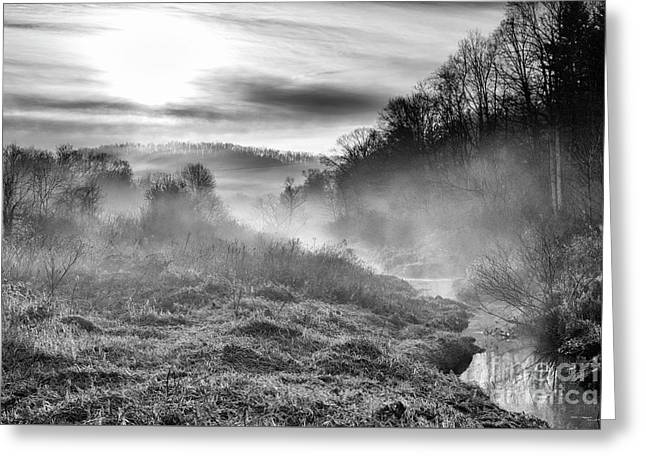 Greeting Card featuring the photograph Winter Mist by Thomas R Fletcher