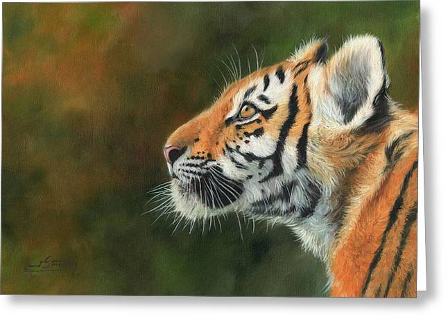 Young Amur Tiger  Greeting Card by David Stribbling