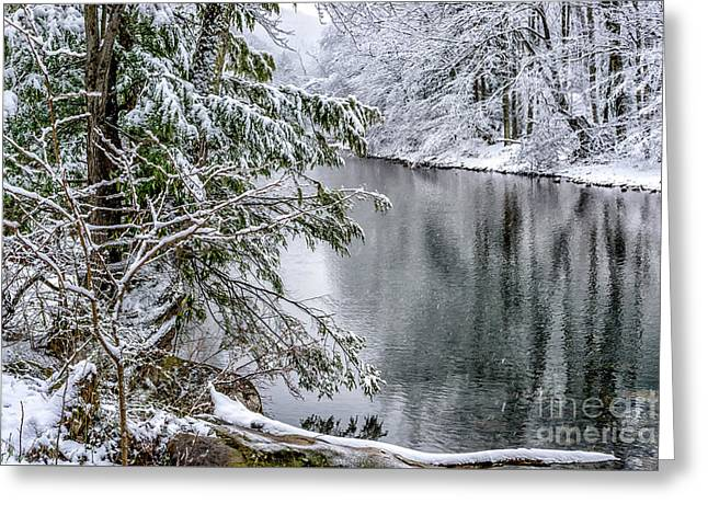 Greeting Card featuring the photograph Winter Along Cranberry River by Thomas R Fletcher