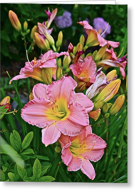 2015 Summer At The Garden Daylilies 1 Greeting Card