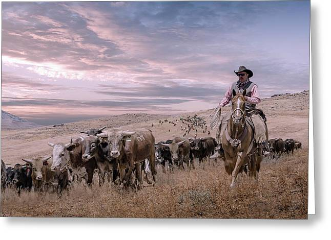 2016 Reno Cattle Drive Greeting Card
