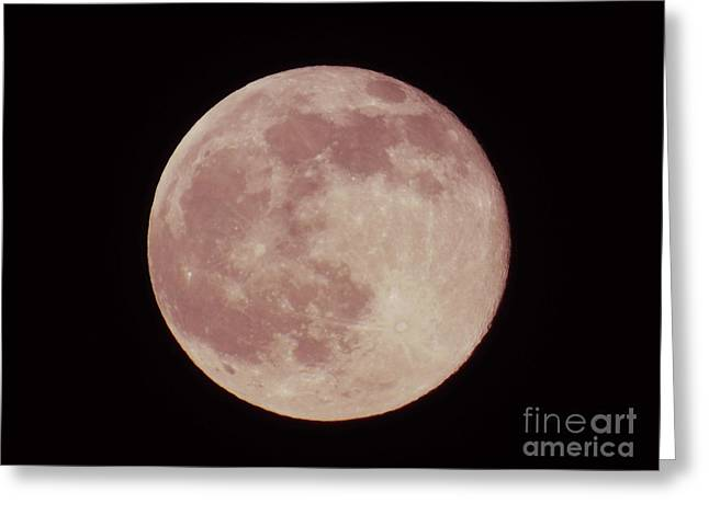 2016 Summer Solstice Strawberry Moon  Greeting Card by D Hackett
