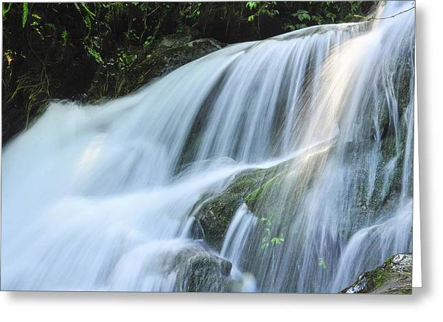 Greeting Card featuring the photograph Waterfall Scenery by Carl Ning
