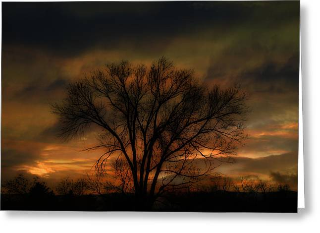 243 Greeting Card by Peter Holme III
