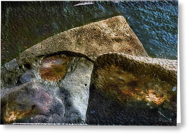 Stone Sharkhead Greeting Card