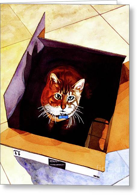 #260 Cat In The Box Greeting Card by William Lum