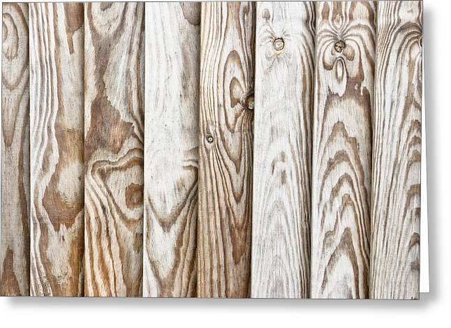 Fence Panels Greeting Card by Tom Gowanlock