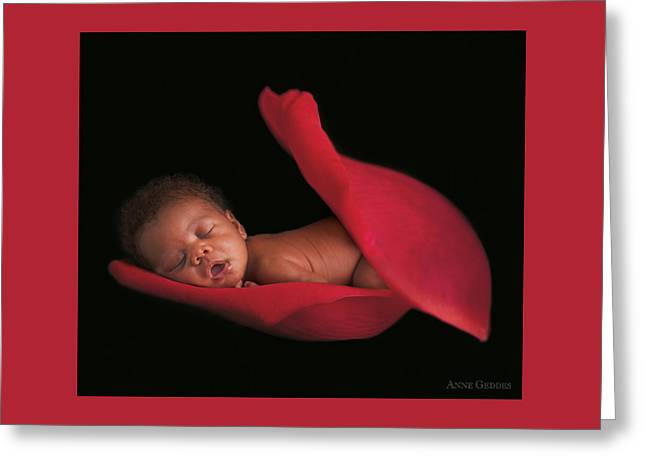 Amaya In A Rose Petal Greeting Card