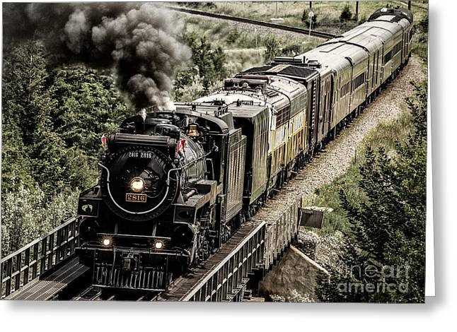 2816 Empress At Seebee Crossing Greeting Card