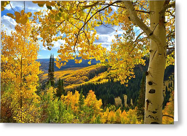 Ohio Pass Fall Colors Greeting Card