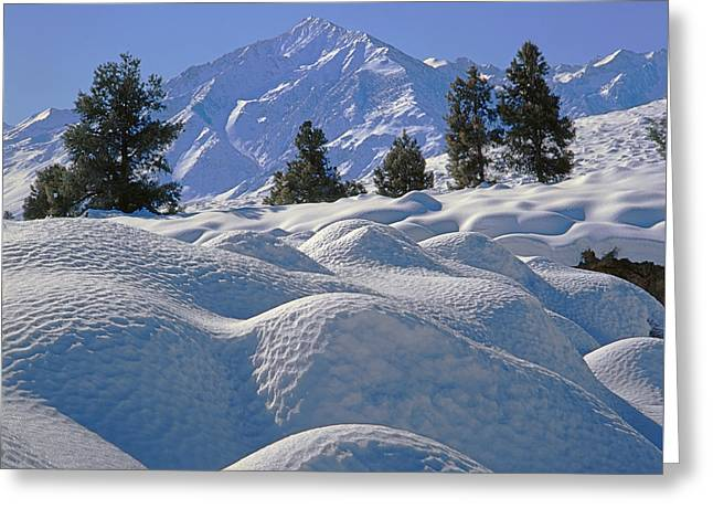 2m6402 Mt. Tom From Sherwin Grade Greeting Card