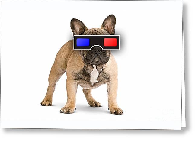 3d Dog Collection Greeting Card