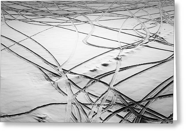 Movement In Snow Greeting Card