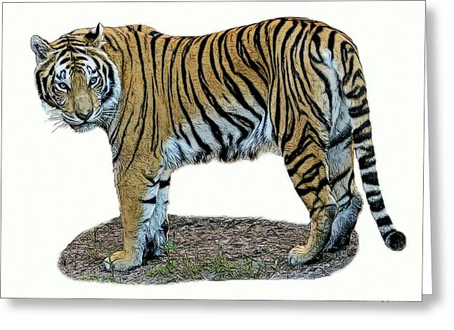 Asian Tiger Greeting Card by Larry Linton