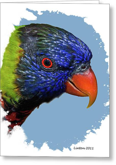 Australian Lorikeet Greeting Card by Larry Linton