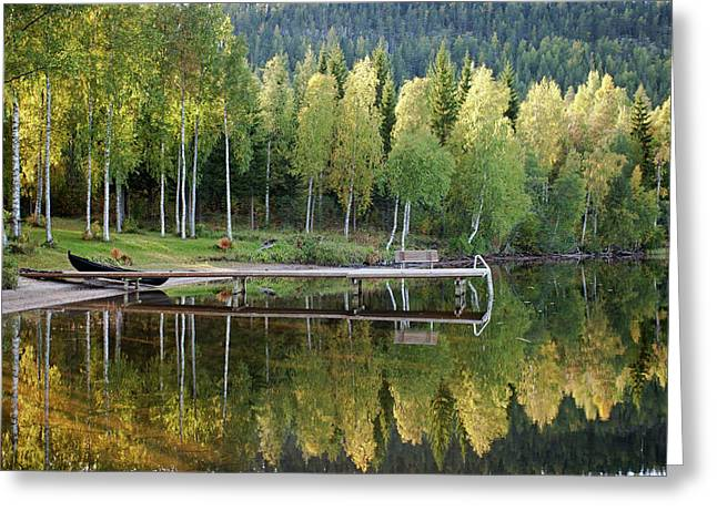 Birches And Reflection Greeting Card