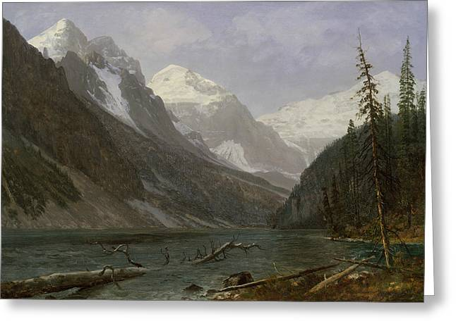Canadian Rockies Greeting Card by Albert Bierstadt